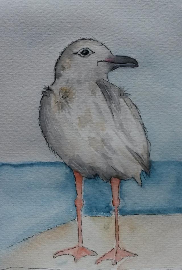 Seagull01